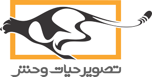 wpi-logo