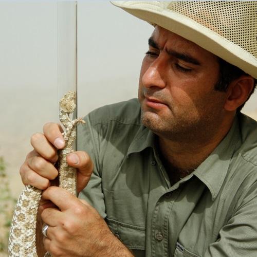 Dr. Behzad Fathinia