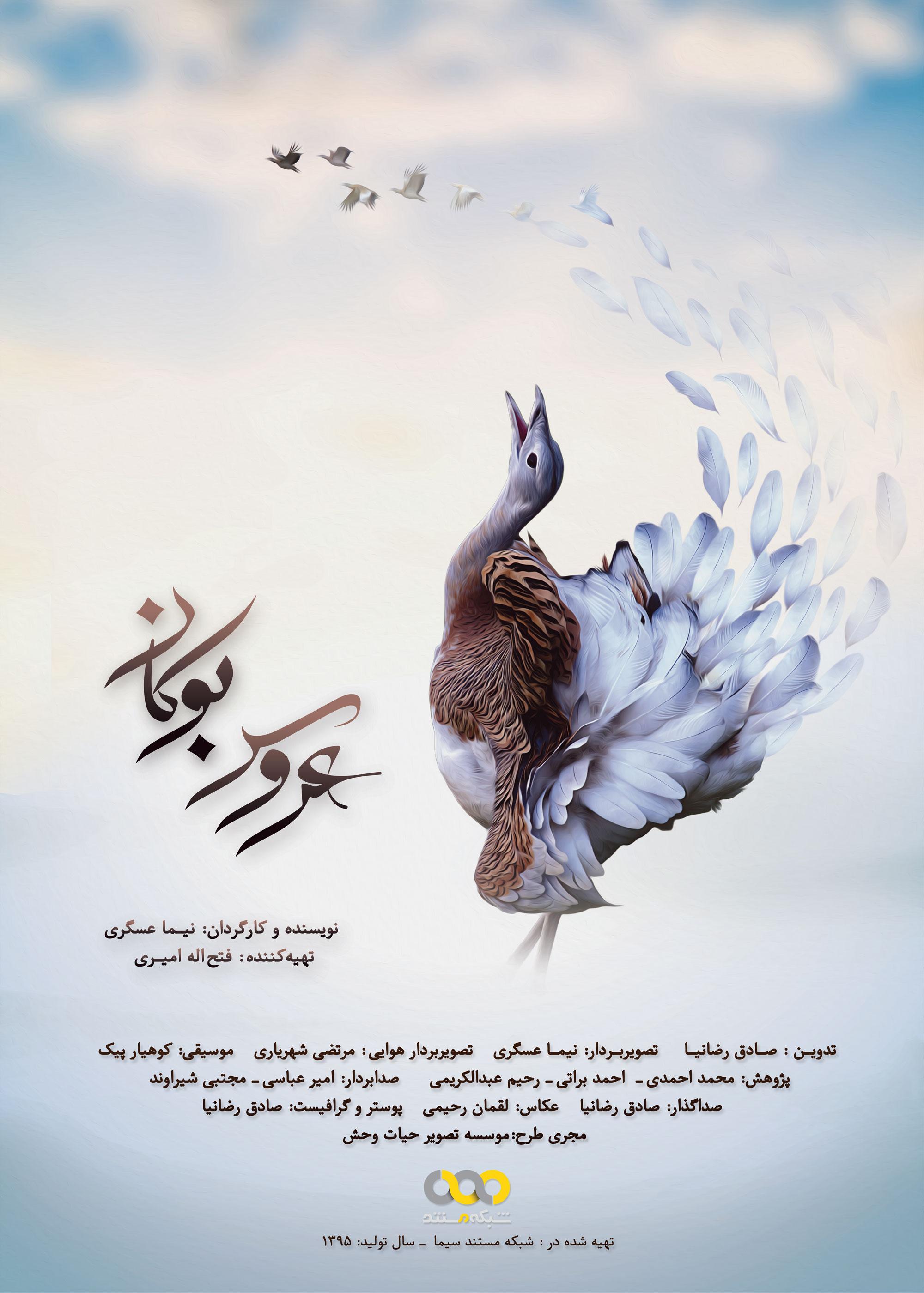 پوستر فیلم مستند عروس بوکان