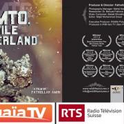 Alamto-TV